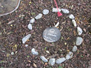 Ein Kind hat ein Grab für einen Regenwurm gestaltet